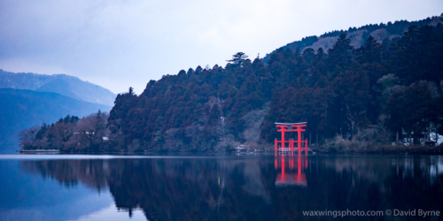 Torii at Hakone